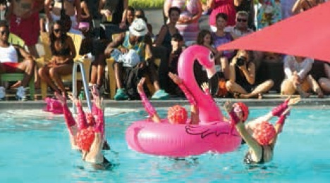 """DCFit-tastics"" perform their Flamingo Fantasy. Photo: Perry Klein"