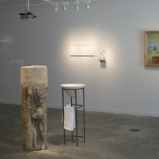"""EnterState: Sensing the Natural World,"" installation view."