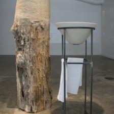"""EnterState: Sensing the Natural World,"" installation view."